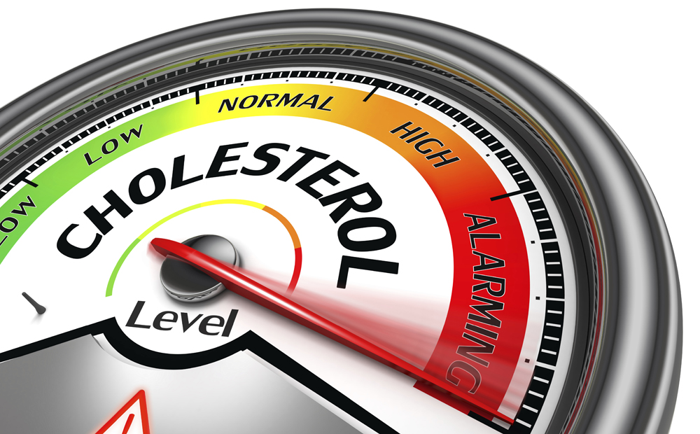 vet cholesterol